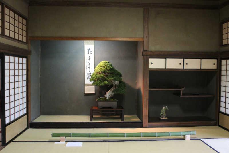 Tokonoma avec une calligraphie japonaise et un bonsaï